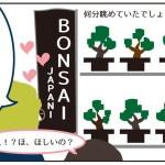 盆栽がほしい