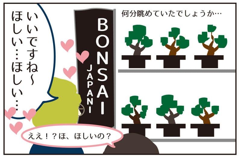 あれちゃんと盆栽【購入編】