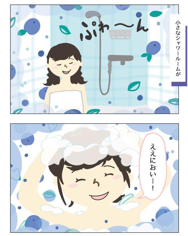 finland-shampoo
