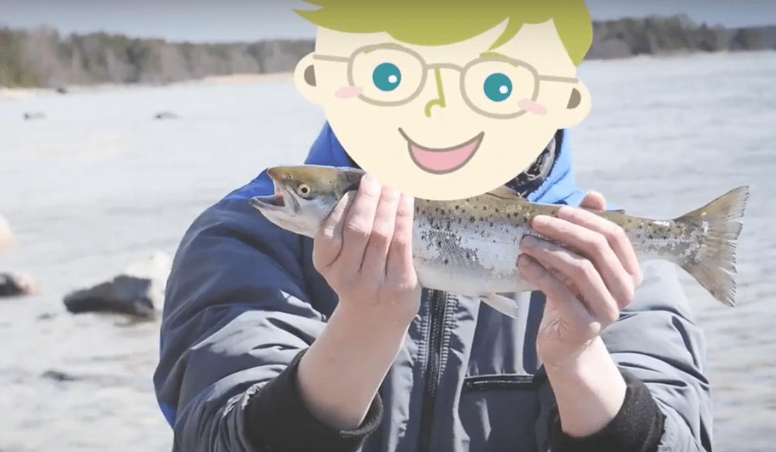 サーモンが釣れちゃった!フィンランドで釣りに行ってきました【ビデオブログ】VLOG
