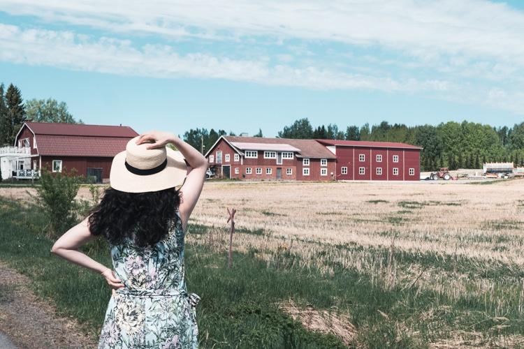フィンランド 田舎