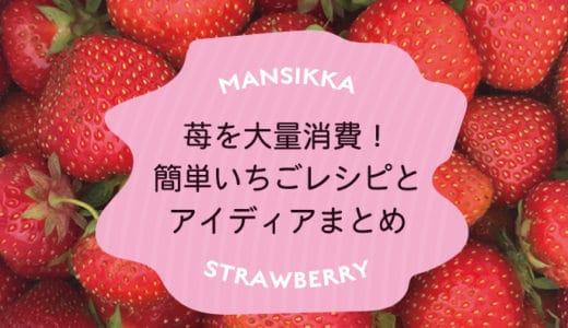 おしゃれに苺を大量消費!ご飯からお菓子までいちごレシピ&アイディアまとめ