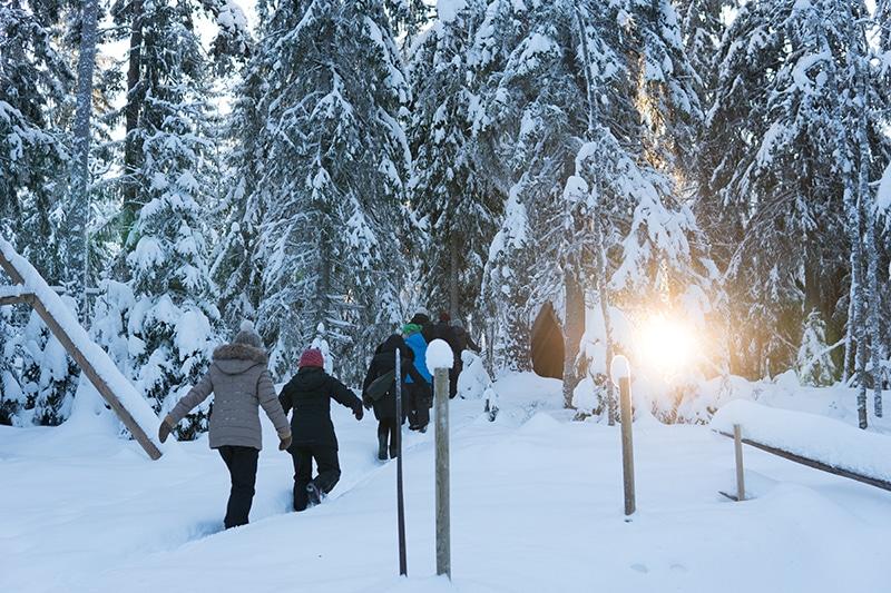 冬景色 フィンランド