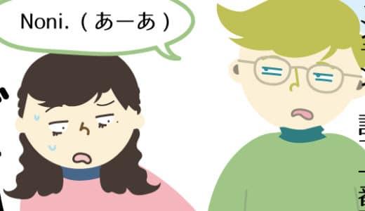 フィンランド語の「Noni」はなんでも使えるから、とりあえず覚えておけば会話は成り立つ
