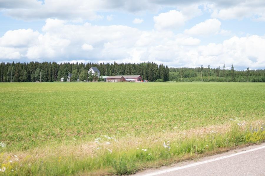 ポウトゥア フィンランド